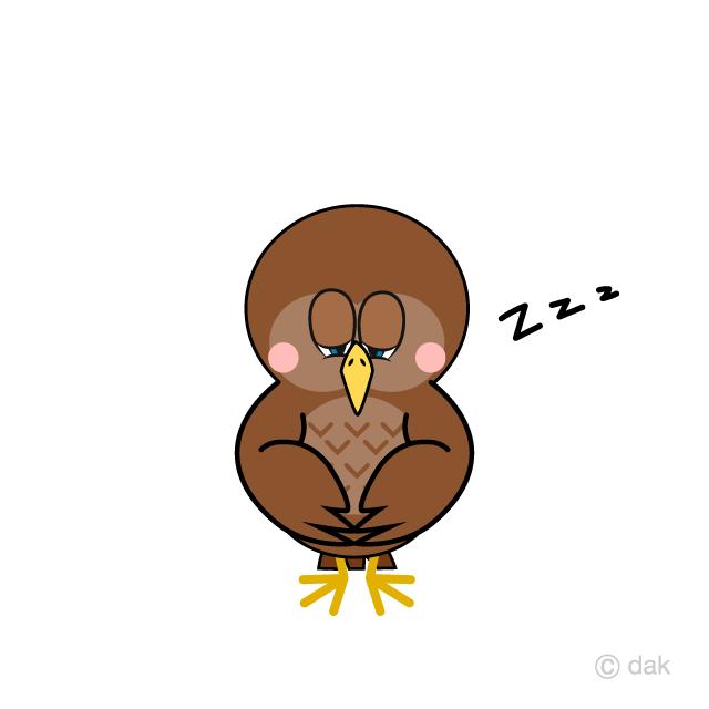 Sleeping Owl Cartoon Free PNG Image Illustoon